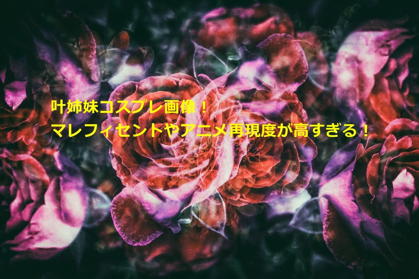 叶姉妹コスプレ画像!マレフィセントやアニメ再現度が高すぎる!