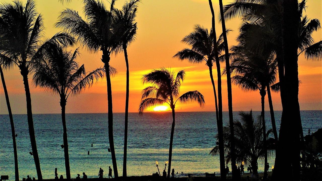 星野リゾートがハワイに!場所や料金と予約は?独自イベントとは?!
