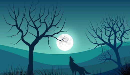 【眠れないオオカミ最新情報】100日後に死ぬワニとの違いと結末予想も!